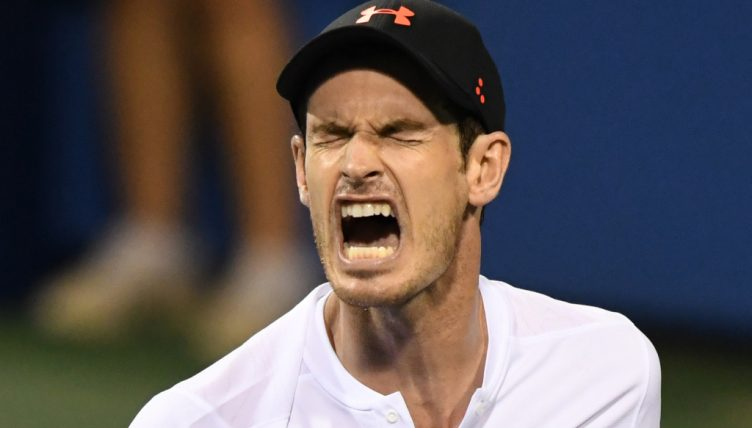 Andy Murray screaming