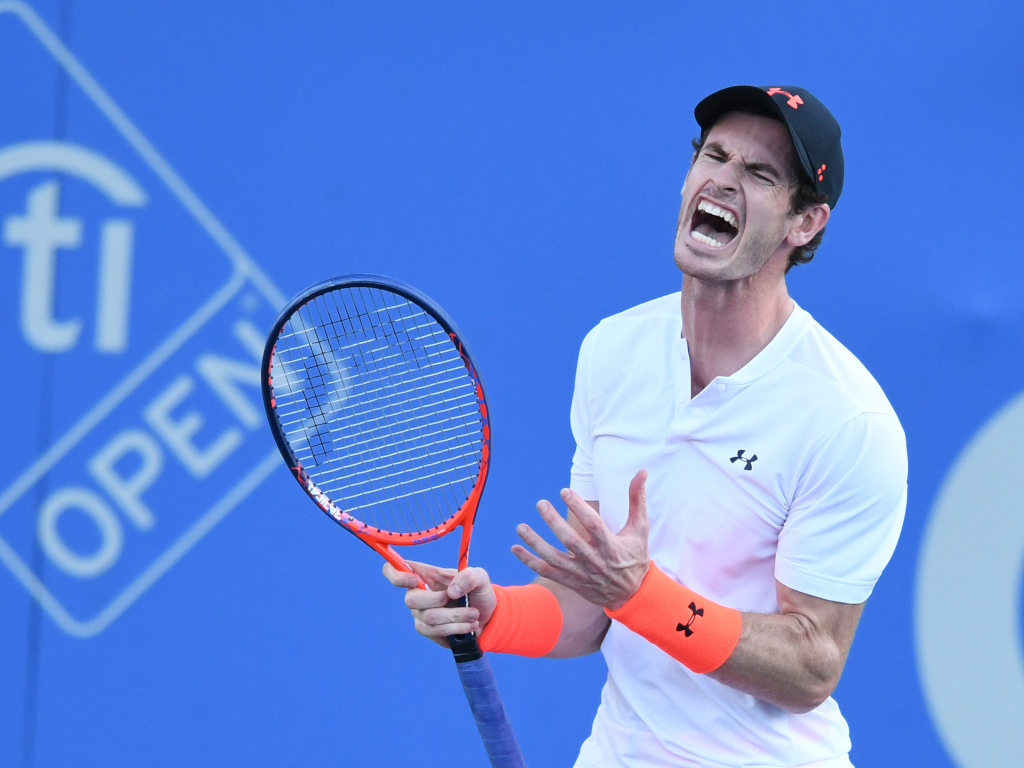 Andy Murray shouting