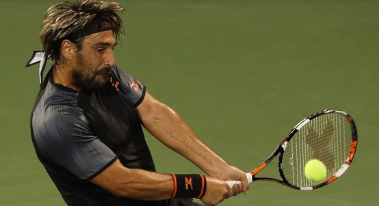 Marcos Baghdatis in action