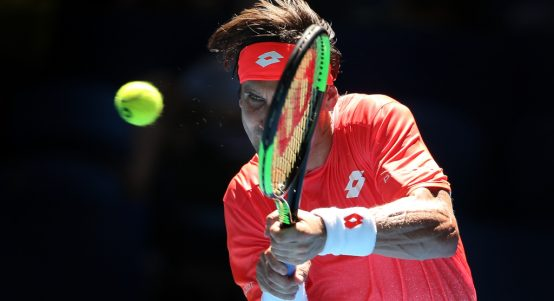David Ferrer in action