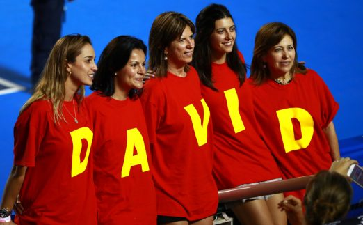 David Ferrer fans
