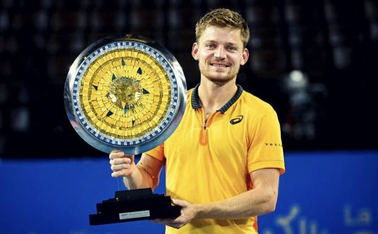 David Goffin is a winner again