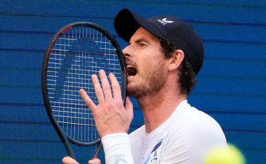 An animated Andy Murray